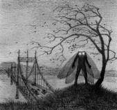 The Mothman from Monsters: The Hunt and Capture, interior illustration